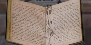 Wonderland Original Manuscript